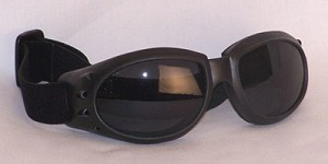 Apollos III  Goggles Sunglass Grey Lenses